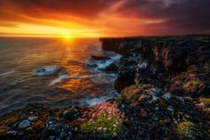 Blooming emotions! Sunset at Snaefellsnes cliffs Iceland. Photographed by Blai Figueras. [2500 x 1667]