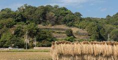 島原・天草 | エリア | 「おらしょ-こころ旅」(長崎の教会群とキリスト教関連遺産)