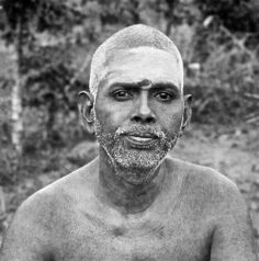 "Correcting oneself is correcting the whole world. The Sun is simply bright. It does not correct anyone. Because it shines, the whole world is full of light. Transforming yourself is a means of giving light to the whole world."" —  	Sri Ramana Maharshi"