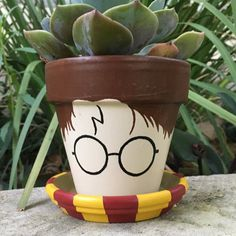 DIY Harry Potter Blumentopf