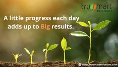 Trusmart solutions I IT services for emerging and small business. Digital Marketing Services, Online Marketing, Social Media Marketing, Search Engine Optimization, Ads, Business, Store, Business Illustration
