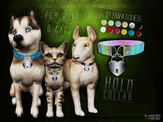 Lana CC Finds - Collar for pups & cats