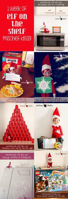 Elf on the Shelf Week 1 Recap - 7 fun Elf on the Shelf ideas (plus links to almost 100 more!)