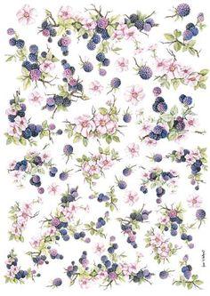 Ежевика и цветы_32 грн