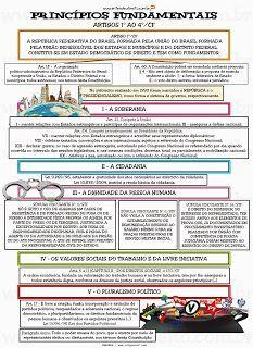 Nós, representantes do povo brasileiro, reunidos em Assembleia Nacional Constituinte para instituir um Estado Democrático, destin...