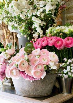 when do ranunculus bloom