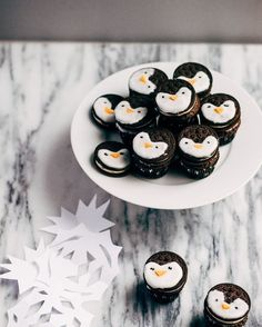 Time for motivational quotes by apenguinproblem So Yummy and So adorable! #penguinfood #oreo #DIY #sweettreats #desert #penguinlove #penguins #love #rocks #loverocks #motivationalquotes #dreambig #pinguin #pinguino  #pinguin #kingpenguin #penguinquote #pittsburgh #inspired #fluffy #animallover #quotestagram #truelove #mateforlife #soulmate  #grow  #saveourplanet #saveanimals