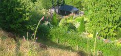 Plas Bach_cabin in valley