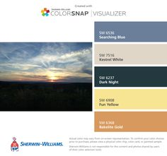 I found these colors with ColorSnap® Visualizer for iPhone by Sherwin-Williams: Searching Blue (SW 6536), Kestrel White (SW 7516), Dark Night (SW 6237), Fun Yellow (SW 6908), Bakelite Gold (SW 6368).