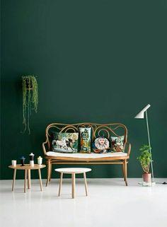 Dans le salon la peinture le mur est vert foncé et les meubles canapé et table basse en rotin et le tout est mis en scène avec une belle plante verte dégoulinante