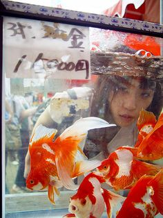 Goldfish and a girl by fleshmeatdoll, via Flickr