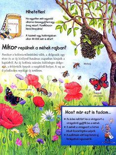 Picasa Webalbumok Environment, Science, School, Picasa, Animals, Creative, Science Comics