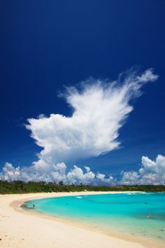Okinawa, Japan #travel #awesome places +++For guide + advice on #lifestyle, visit http://www.thatdiary.com/