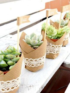 DIY Suculentas para bodas // Wedding suculents www. Wedding Favors And Gifts, Wedding Table, Rustic Wedding, Diy Wedding, Wedding Ideas, Wedding Vintage, Vintage Diy, Trendy Wedding, Baby Shower Souvenirs