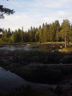 Vesi virta puistossa nähdämyyden kohden luonnon