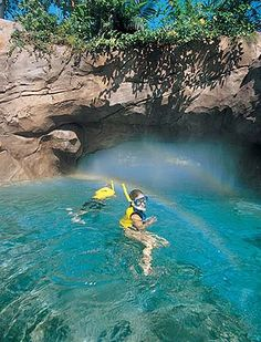 Discovery Cove: Tips