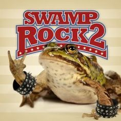Swamp Rock 2