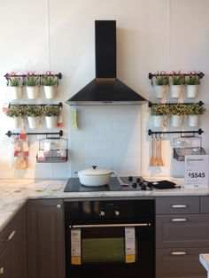 A kitchen wall herb garden? Yes, please!