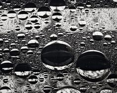 Things that Quicken the Heart: Black & White - The Poetry of Rain; Peter Keetman, Reflecting Drops, 1955