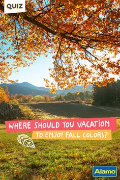Red? Orange? Yellow? Your fall color can influence many things, including your autumn vacation destination. Take our quiz to discover your must-see destination for fall color viewing.