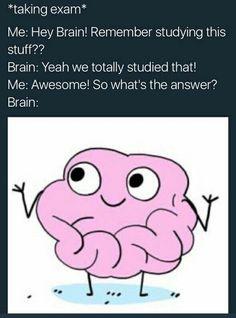Brain why you gotta play me like that?