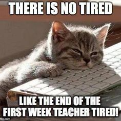 A teacher' she is end-of-the-first-week-teacher tired. School Quotes, School Memes, Funny School, Beginning Of School, Back To School, Teacher Humour, Funny Teacher Quotes, Kindergarten Teacher Quotes, Teacher Sayings