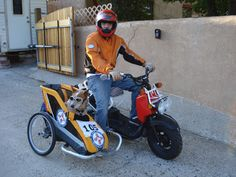 MOTORCYCLE 74: Scooter sidecar dog - home made
