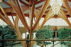 tree inspired centers - Google Search