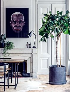 Cultured Home --- House tour: a modern French apartment within an opulent 19th-century shell - Vogue Living