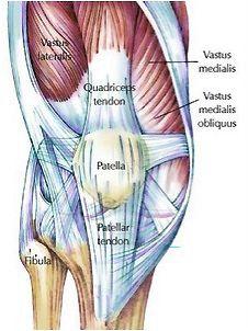 Knee Pain Fixes