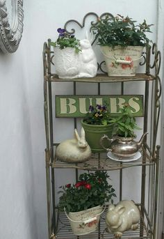 Found this baker's rack at Home Goods several years ago and it makes a great plant stand in the summer.