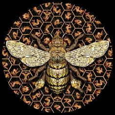 The Last Honey Bee 100x100cm digitial type c print, edition of 10, 2010 by Garth Knight