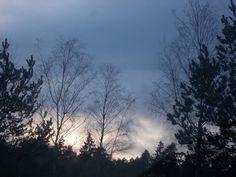 Through Tasha's Camera: Ice Blue Winter Skies!