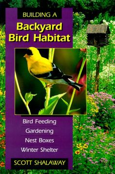 Building A Backyard Bird Habitat