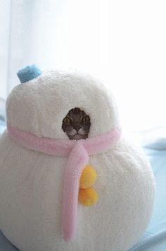 Gatera con forma de muñeco de nieve (esa es solo una ventana, la puerta esta detrás)