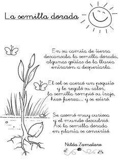 Poema - La semilla dorada, de Nilda Zamataro. Descarga el texto.