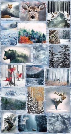Title: Hoffman Call of the Wild FROST PANEL Winter Scenic Forest Fabric yd Panel ~ sold by the Panel. You are buying one panel ofWinter Frost from theCall of the Wild collection digitally printed from Hoffman Fabrics. Wildlife Quilts, Your Spirit Animal, Call Of The Wild, Animal Quilts, Panel Quilts, Quilt Blocks, Landscape Quilts, Cotton Quilting Fabric, Quilting Projects