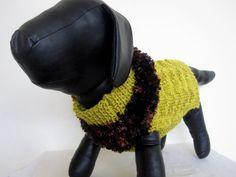 Dog sweater- Green dog sweater/dog gift/fancy fur dog/maltese coat/pug sweater/shih tzu sweater/green dog. couchpotatodogknits.etsy.com