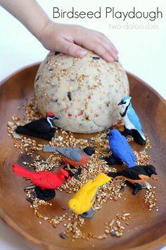 Birdseed playdough.