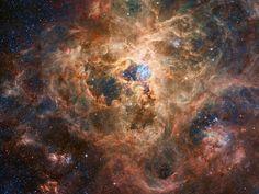 Robert Gendler photo of the the Tarantula nebula: A vast and magnificent star birth factory.