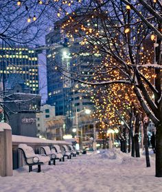So excited for how amazing and magical downtown looks at night during snowfall! Ottawa, Canada http://awesome-canada.com/ #Ottawa #Canada