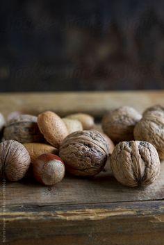 Nuts   Noemi Hauser   Stocksy United