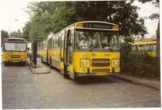 De NZH en met deze bus naar de pabo