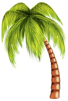 Palm Tree Pictures, Scenery Pictures, Mural Painting, Painting On Wood, Palm Tree Clip Art, Zoo Coloring Pages, Fall Clip Art, Fish Drawings, Banjo