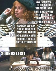 Harry Potter Meme - Through Brickwall, Sounds Legit
