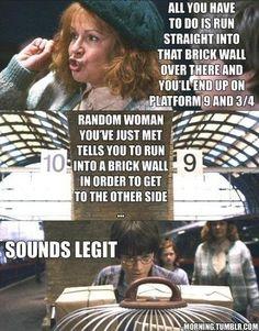 Harry Potter Meme - Through Brickwall, Sounds Legit