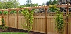 Stunning Privacy Fence Line Landscaping Ideas 94