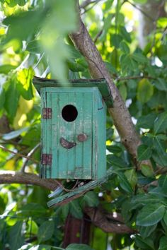 Rustic birdhouse, outhouse for birds.........LOL!