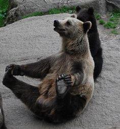 Iso karhu ja pikkukarhu