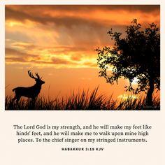 Top 25 Most Popular Bible Verses in Habakkuk